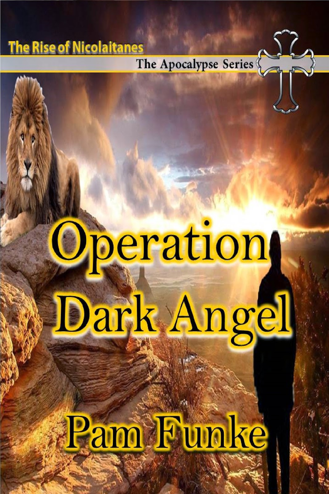 http://operationdarkangel.blogspot.com/