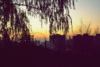Ver caer el Sol