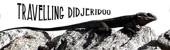 Travelling Didjeridoo