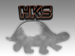 Alasan Evolusi HKS Lambat