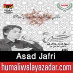 http://www.humaliwalayazadar.com/2015/10/asad-jafri-nohay-2016.html
