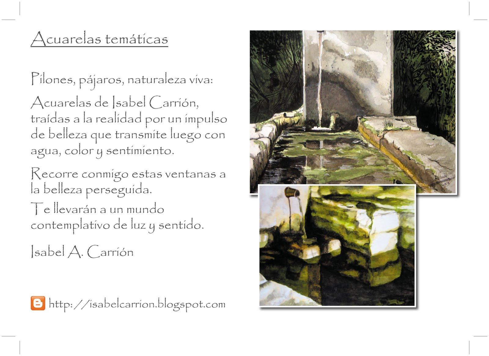 Próxima exposición: LA REPUBLICA DE LA LETRAS. CORDOBA. ACUARELAS¡, JUNTO A LA ARTISTA ROSA PEREZ