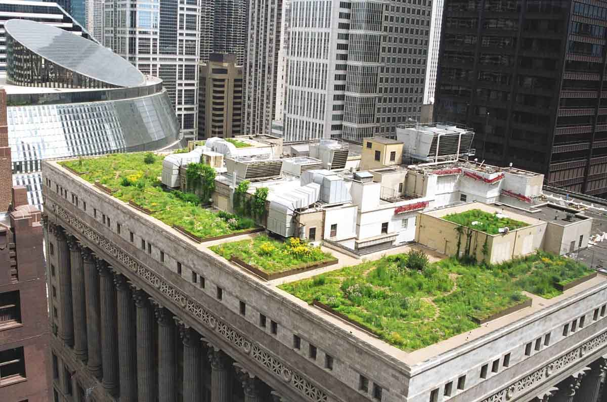 Creative Urban Roof Gardens Designs Wallpapers HD Photo
