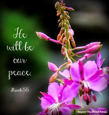 God's Word, Peace, Bible Verse, photography, beyond the picket fence,  http://bec4-beyondthepicketfence.blogspot.com/2015/04/sunday-verses_12.html