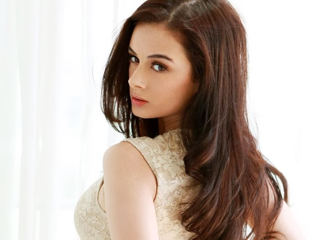 Evelyn+Sharma+Hd+Wallpapers+Free+Download023