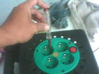 cara mengukur dengan tespen