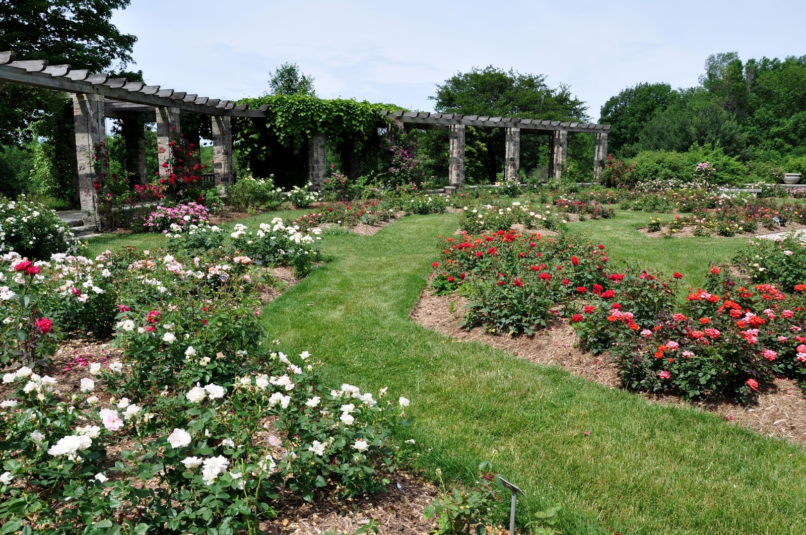The Rose Garden At Boerner Botanical Garden