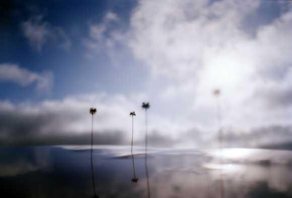 vanessa marsh fotografia modelos miniaturas paisagens natureza solidão destruição pós-apocalíptico