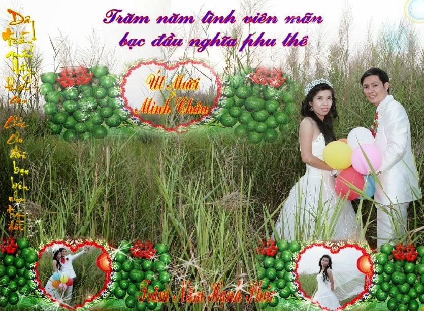 http://inbangronqc.blogspot.com/2014/02/in-pp-tphcm.html