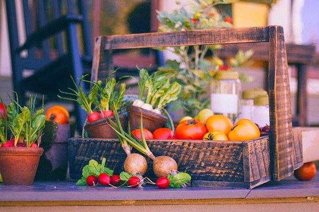 alimentos orgánicos, bebidas orgánicas