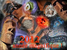 BONNE ANNEE 2012 !