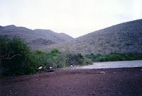 Flamingo Lagoon on Rabida Island, Galapagos
