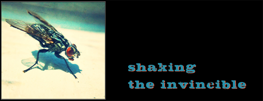 Shaking The Invincible
