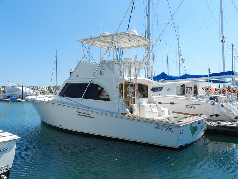 Puerto morelos barcos de pesca por 4 6 y 8 horas con for Puerto morelos fishing