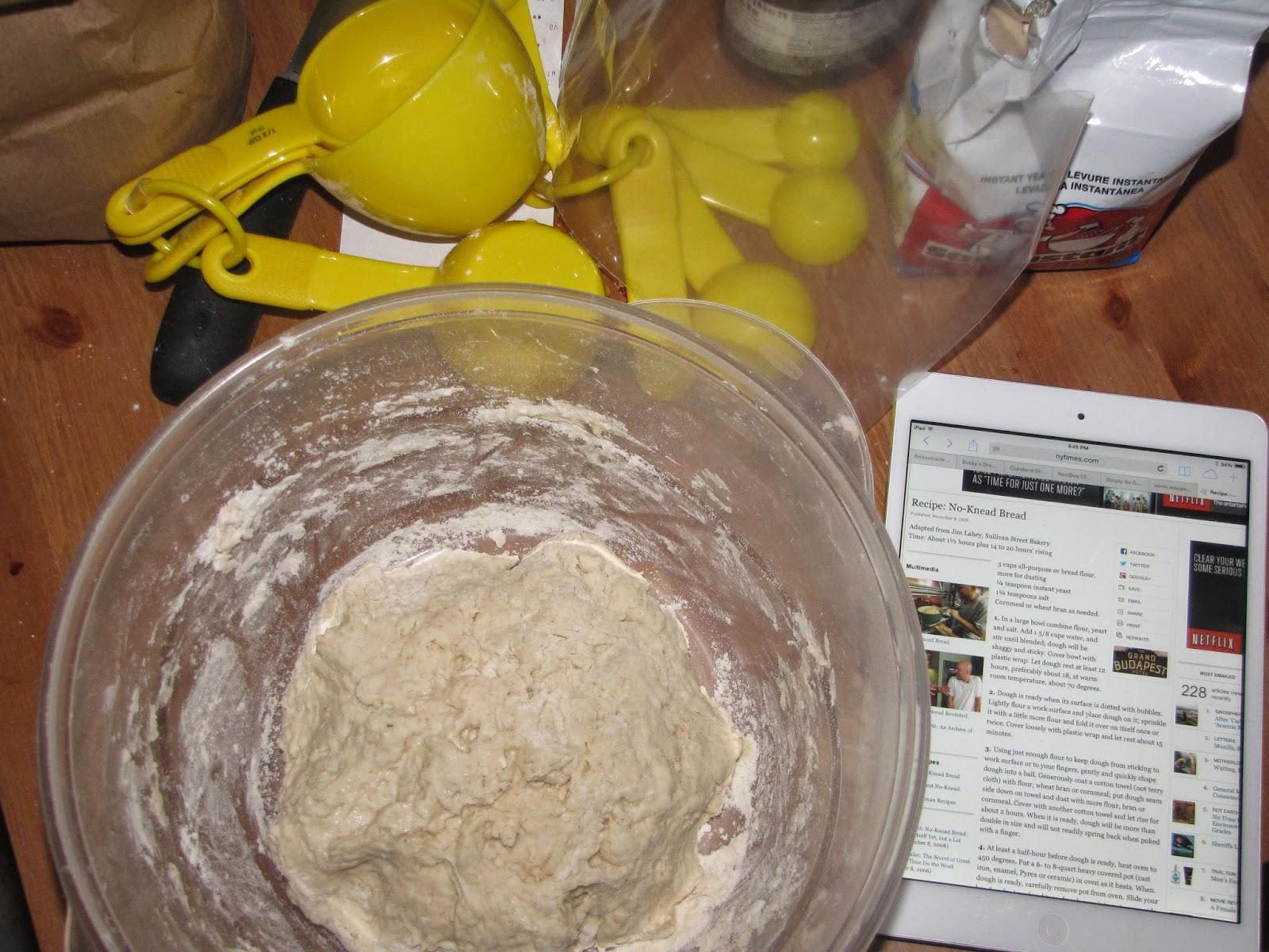 Freshly Mixed Bread Dough