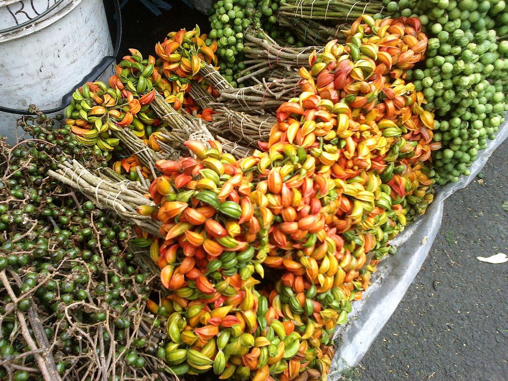 OUR PHILIPPINE TREES: New Stuff in the Flower Basket