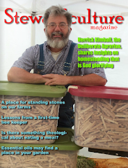 My Stewardculture Magazine Interview<br>(Part 1)
