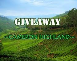 GIVEAWAY : cenderamata CAMERON HIGHLAND dari Normala Ali