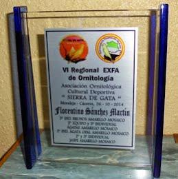 VI Regional EXFA Moraleja 2.014
