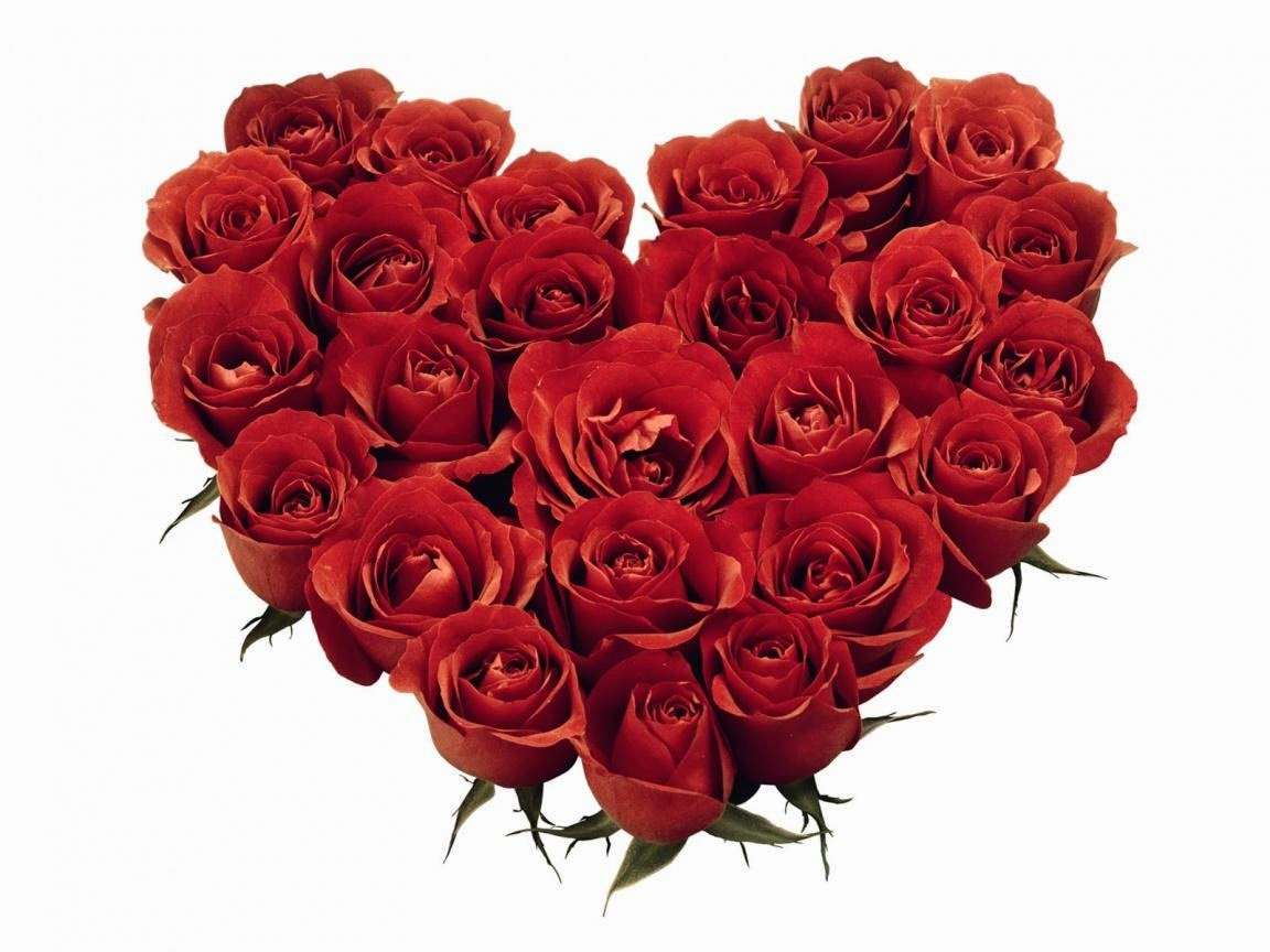 Koleksi Rangkaian Bunga Mawar Cantik Aneka Indonesia