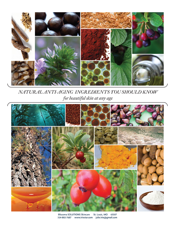 Natural Anti-Aging Skincare Ingredients You Should Know for beautiful skin at any age - natural skincare booklet