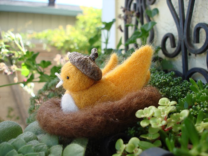 Autumn Bird in Acorn Cap
