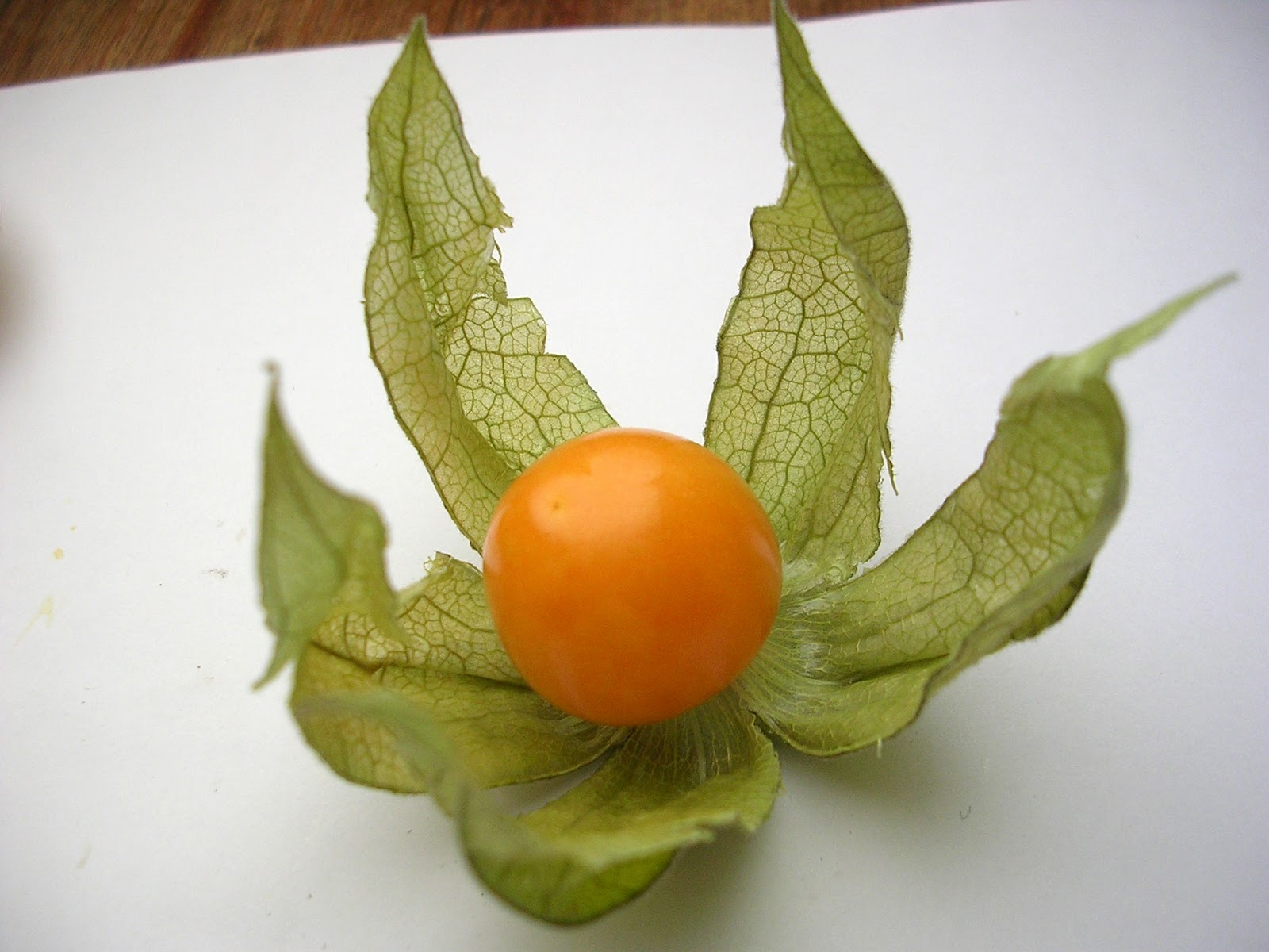 cox orange s