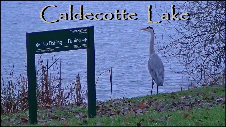 Caldecotte Lake