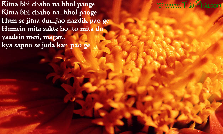 hindi-valentine-sms