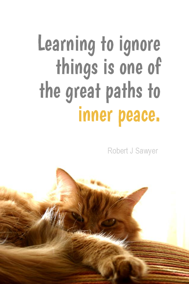 visual quote - image quotation for CALMNESS - Learning to ignore things is one of the great paths to inner peace. - Robert J Sawyer