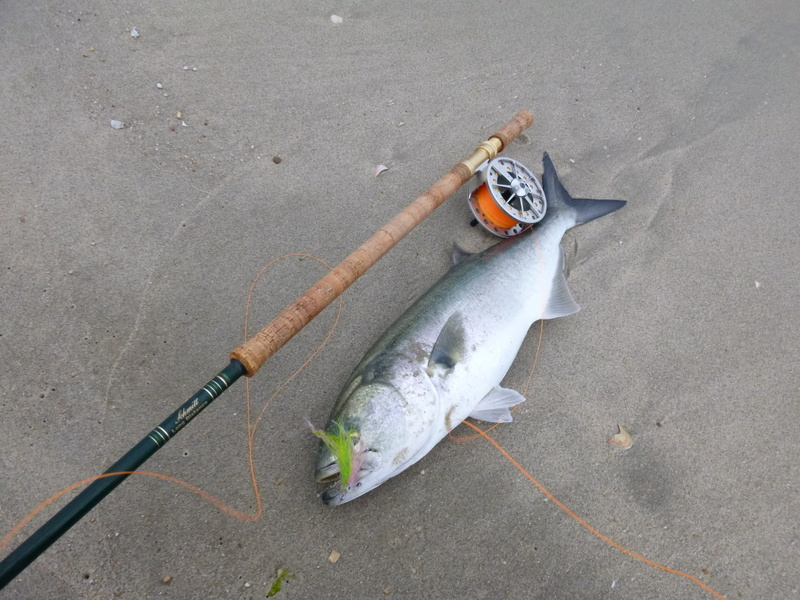 Going to the water sandy hook nj for Best fishing spots in nj