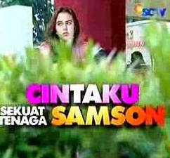 Cintaku Sekuat Tenaga Samson - Nama pemain Cintaku Sekuat Tenaga Samson