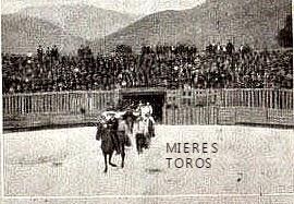 MIERES TOROS