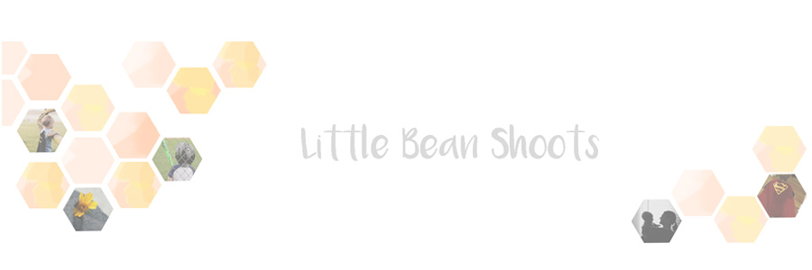 Little Bean Shoots