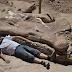 Saintis Argentina Jumpa Tulang Dinosaur Gergasi