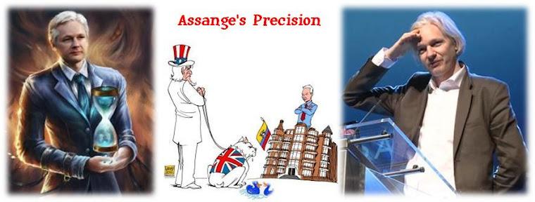 Assange's Precision