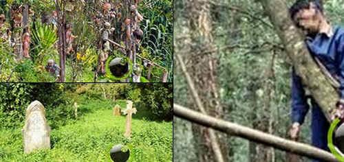 7 Hutan Angker Menyeramkan yang sering Diburu Pecinta Misteri