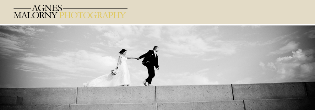 Chicago and Suburbs Wedding and Portrait Photographer - Agnes Malorny!!