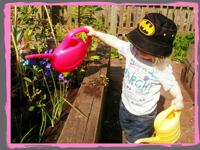 Toddler watering the plants