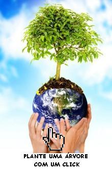 Plante uma árvore! Salvem vidas!