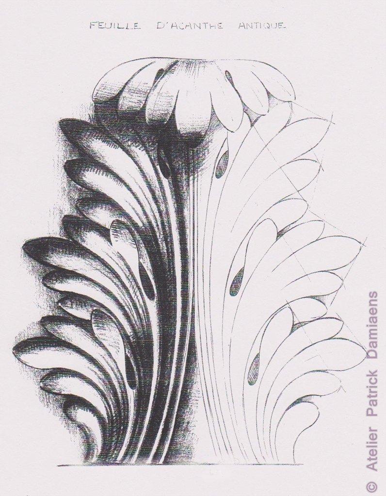 Sculpture ornementale patrick damiaens la feuille d 39 acanthe motifs ornementaux des motifs - Feuille d acanthe ...