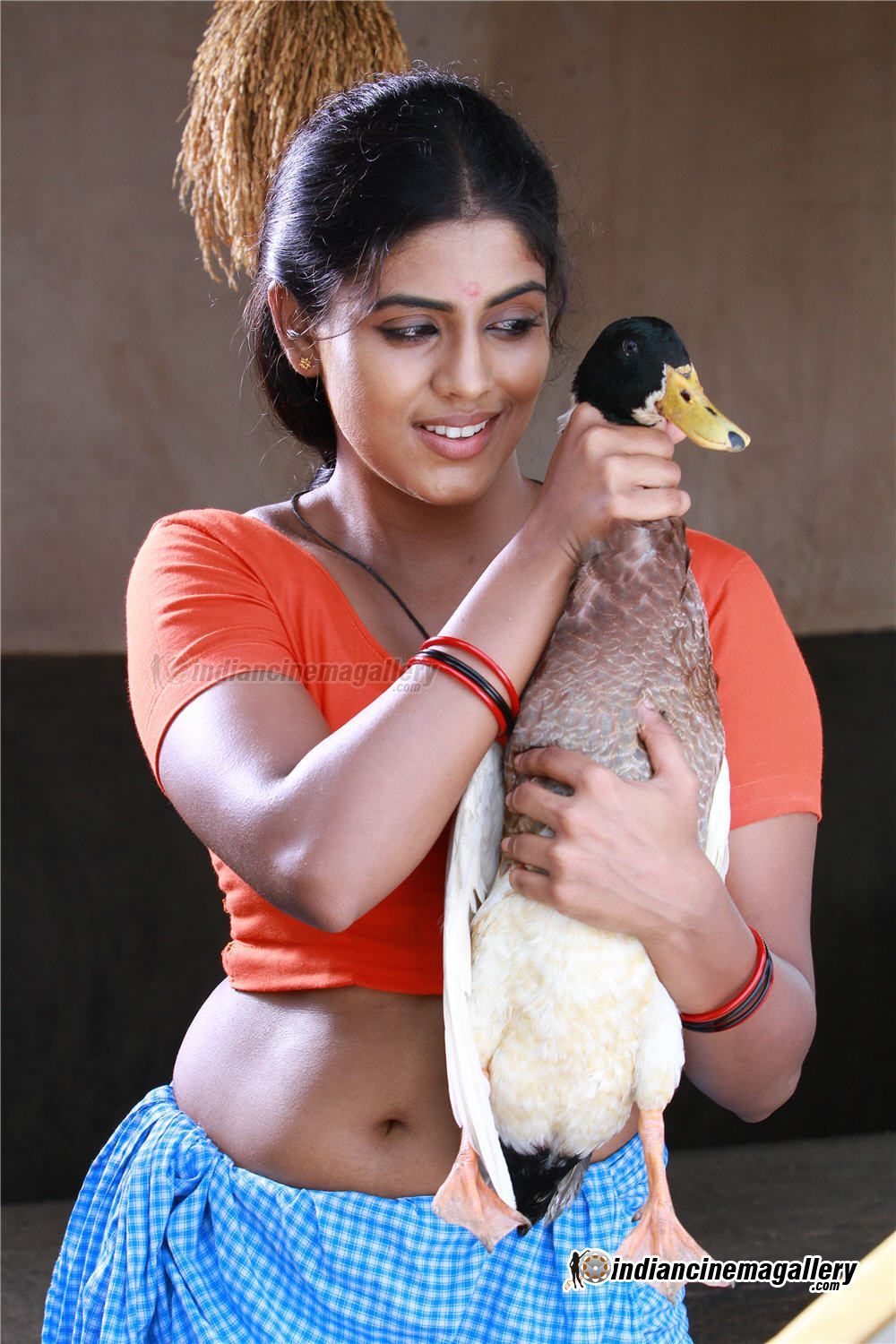 Hot mallu actress iniya deep navel dance - 2 4