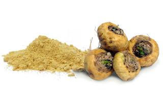 Raíz de maca proviene del Perú y se usa como suplemento