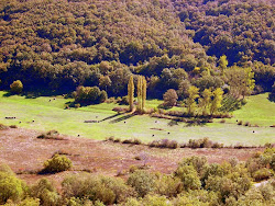 El Valle Zamanzas