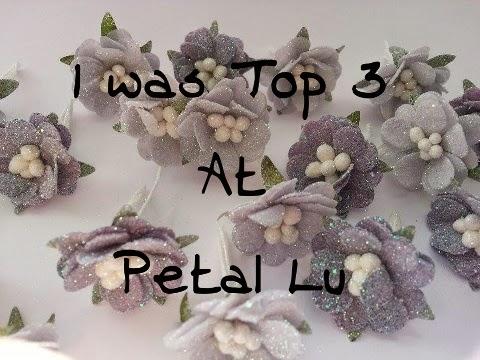 Petal Lu Top 3