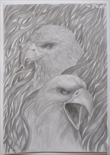 орел карандашом