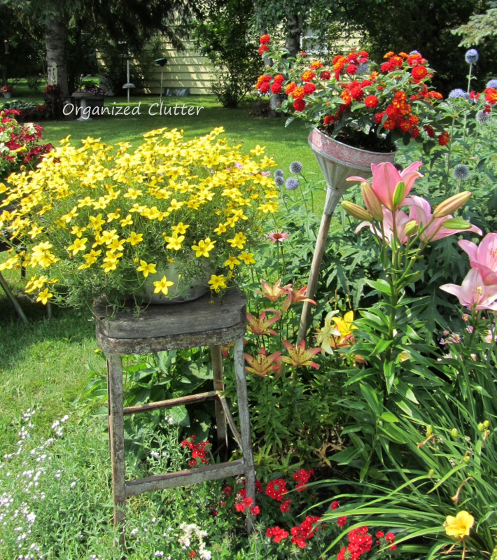 Old Stool & Funnel in the Garden www.organizedclutterqueen.blogspot.com