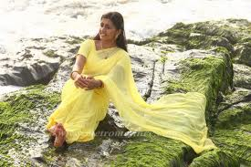 Sarayu-hot-malayalam-Actress-Pics-6