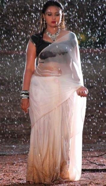 actress saree wet indian Hot