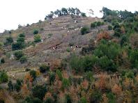 Les ziga-zagues de Pedres Blanques